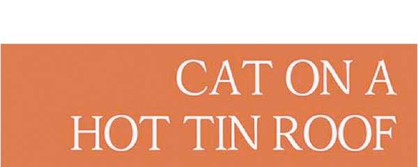 10 CAT ON A HOT TIN ROOF